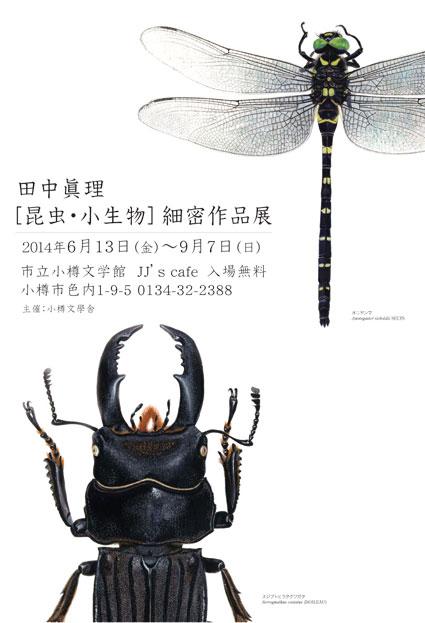 昆虫・小生物細密作品展